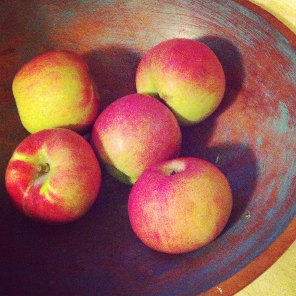 gastropost, apples, lindsay zier-vogel